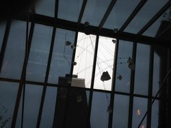 Greenhouse ceiling -- big, fat crack in the window to the left of the bright window