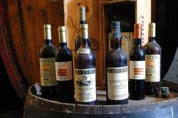 Azienda Vinicola Contini