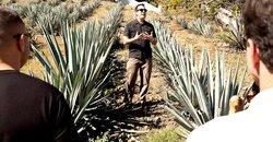 Spirit of Jalisco - Day Tours