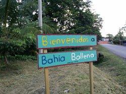 Parque Nacional Marino Bahia Ballena