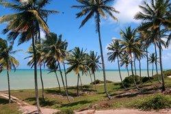 Cotia Beach