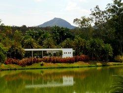 Beeldenpark van het Centro de Arte Contemporânea Inhotim