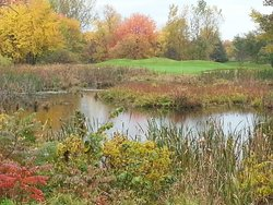 Fenton Farms Golf Club