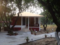 Kailash Farms