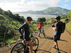 Offtrack MTB Tours - Day Tours