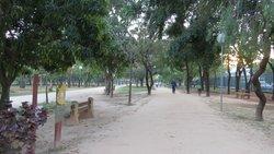 Parque dos Ipês