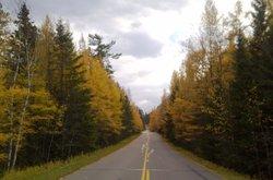 Wilderness Drive