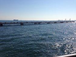 Honmoku Fishing Park