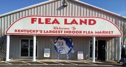 Flea Land