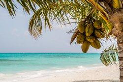 Meeru June 2014 - perfect holiday :-)
