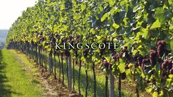 Kingscote Estate and Vineyard