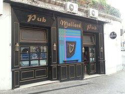 Mallard Pub Catanzaro Italia