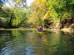Tu Canoe Rentals