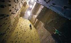 Rock Solid Climbing Wall