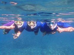 Maui Snorkel Tours