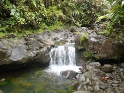 Tahiti Reva Trek - Day Tours