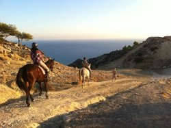 Alexandros Riding Stables
