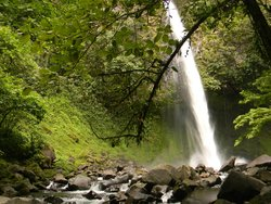 Costa Rica in Travel Group