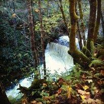 Holland Creek Hiking Trails