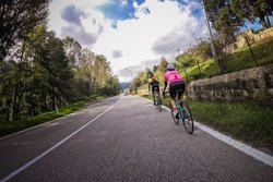 Tuscany.Bike Rent & Tours