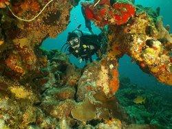 Aquaman Virgin Islands