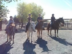 Shadow Glen Riding Stables