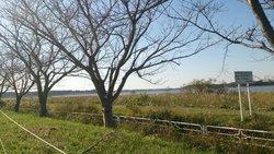 Imbanuma Lake