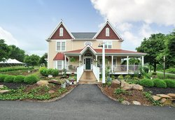 Chapel Valley Estate