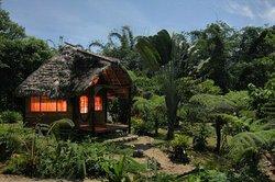 Arajuno Jungle Lodge