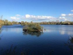 Radley Lakes / Thrupp Lake Trail