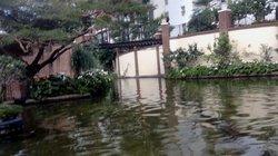 Delta Riverboat Company at Gaylord Opryland Resort