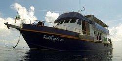 AIDC - Andaman International Dive Center - Day Dives