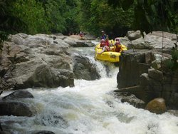 Pierose Swiftwater