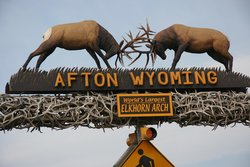 World's Largest Elkhorn Arch