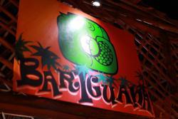 Bar Iguana