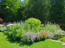 Thuya Gardens