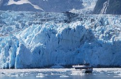 Major Marine Tours - Prince William Sound Glacier Cruise
