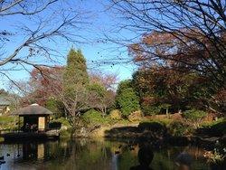 Chiba Kashiwanoha Park