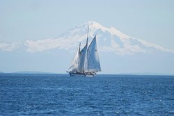 Schooner Zodiac - Day Cruise