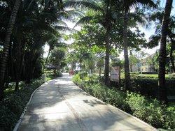 Walkways are all beautiful