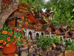 Nina's Hillside Garden