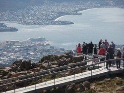 Tasmania Tour Guide