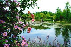 Karuizawa Lake Garden