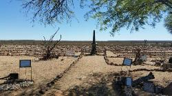 Preserved graves