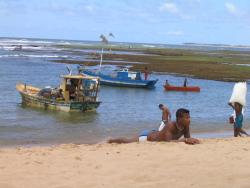 Praia do Forte Tours