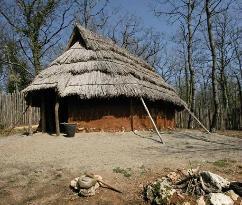 Museo Civico per la Preistoria del Monte Cetona & Parco e Archeodromo di Belverde
