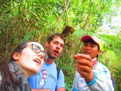 The Jungle Eco-Guide Service - Day Tours