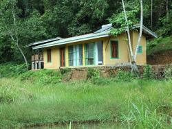 Sinharaja Forest Edge