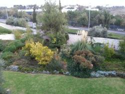 Lovely garden outside my balcony.