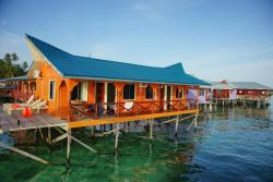 Arung Hayat Sea Adventures
